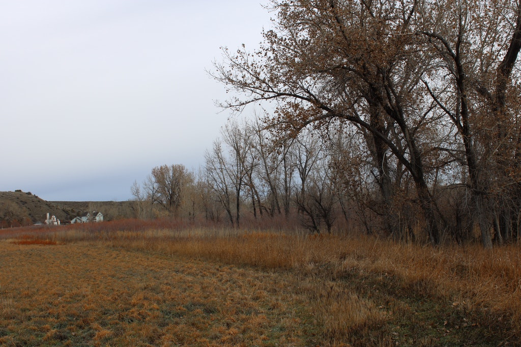 Creekside.Ranch.8
